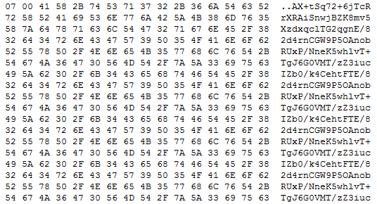 the base64 encoded configuration hidden within the image