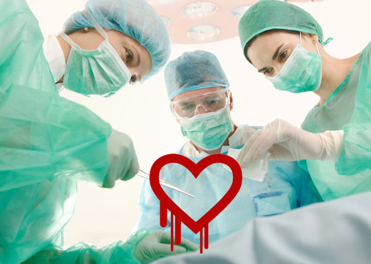 Heart-Bleed-Vulnerability-Security