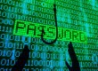 IBM Trusteer researchers recently discovered a new configuration of the evasive Citadel malware that is being used to compromise password management and authentication solutions. Strong, unique passwords are vital for keeping systems safe.