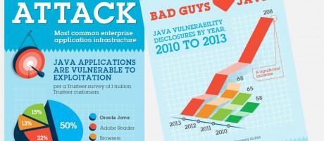 Java infographic