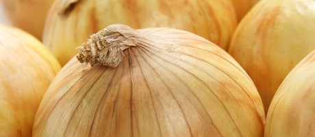 Think of IT and data security strategies as an onion. Your most important data is located at the heart of the onion and is surrounded by multiple layers of defense that an attacker has to bypass in order to complete a potential cyberattack.