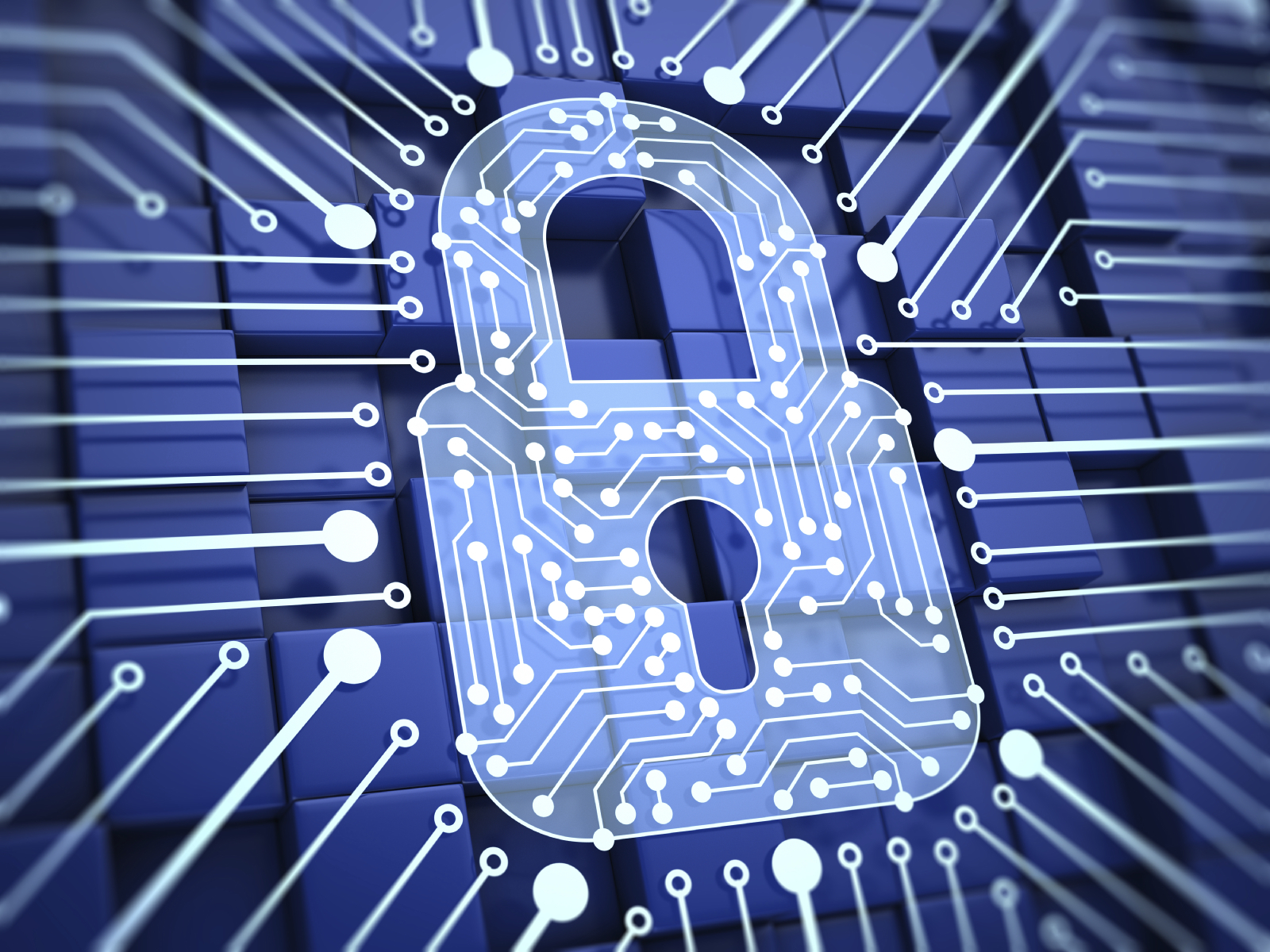 data security how vulnerable is your critical data