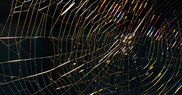 The Dark Web was known as a place where criminals would buy and sell illegal wares, but it has transformed into a place where malicious actors can launch cyberattacks. This area of the Internet makes concealing attack vectors and origins easy.