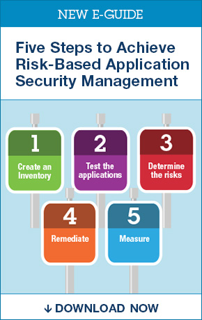New! Free Application Security E-Guide