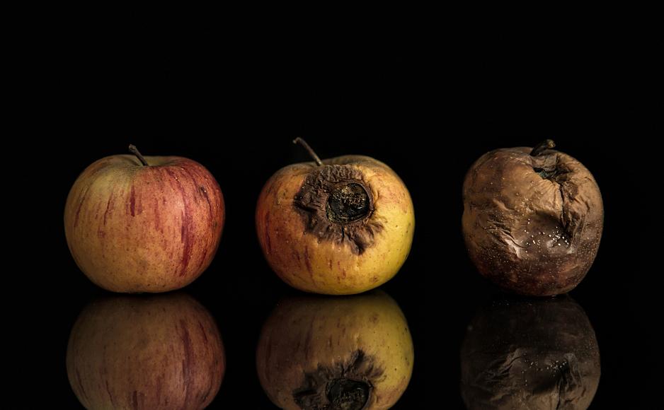 Rotten Apples Macspy Macransom Bring Malware As A