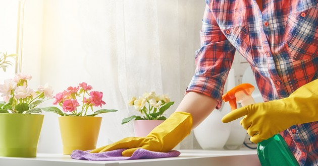 A woman scrubbing a countertop in a sunny room.