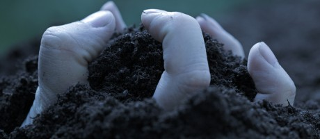 A hand emerging from dirt.