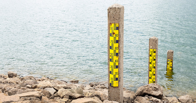 Three stakes used to measure water levels.