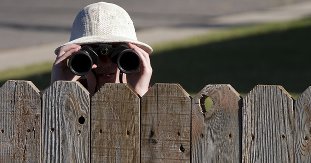A person using binoculars to peer over a wooden fence.