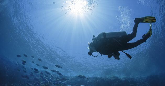A diver underwater.