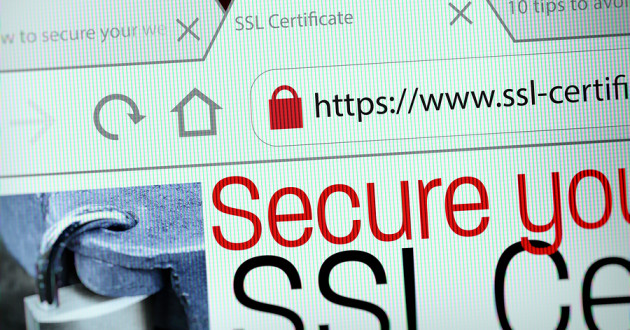 "A web browser tab labeled ""SSL Certificate."""