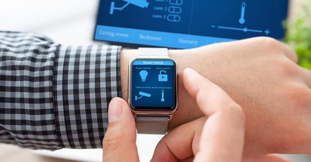 An IoT app on a smart watch and desktop computer: IoT botnets
