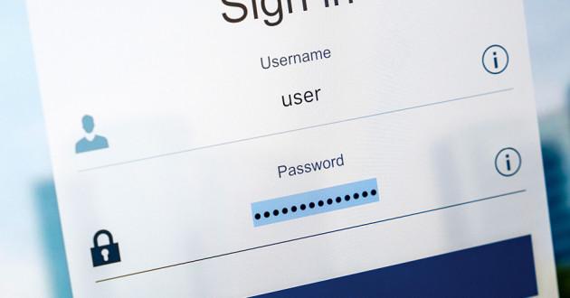 WordPress logo in binary code: phishing campaigns