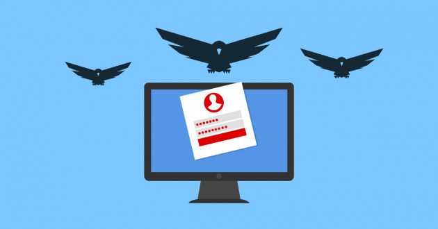 Illustration of menacing birds flying over a computer monitor: Hawkeye keylogger