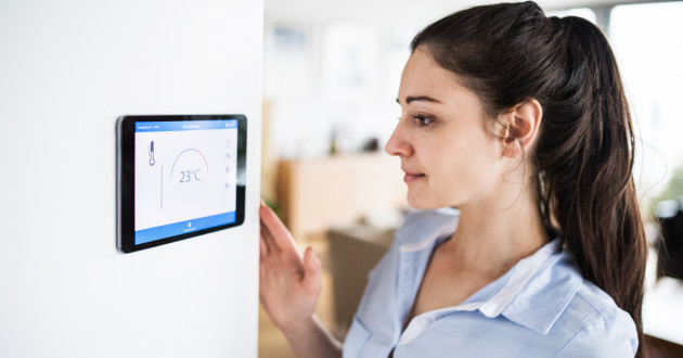 Woman using her IoT device at home: hide 'n seek botnet